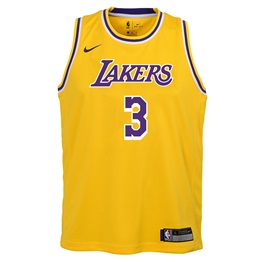 NBA X NIKE KIDS LOS ANGELES LAKERS DAVIS ICON SWINGMAN JERSEY