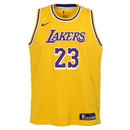 NBA X NIKE KIDS LOS ANGELES LAKERS JAMES LEBRON ICON SWINGMAN JERSEY